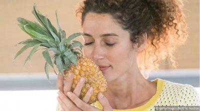 Ananas – die beliebte tropische Frucht