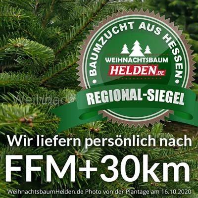 Weihnachtsbaum Helden Frankfurt