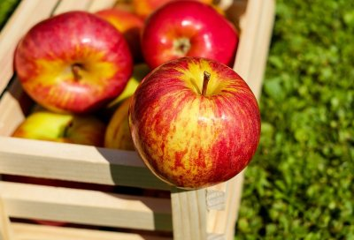 Apfelmarmeladen - Ausgefallene Rezepte mit Äpfeln ganzjährig kochen