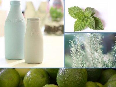 » Limetten-Rosmarin-Joghurt-Eis