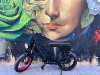 Fat E-bike Deutschland // Little Dragon Bikes